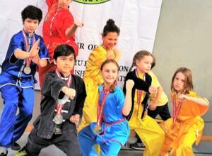 Kinder Kung Fu: für Kinder im Volkschulalter - Try Out