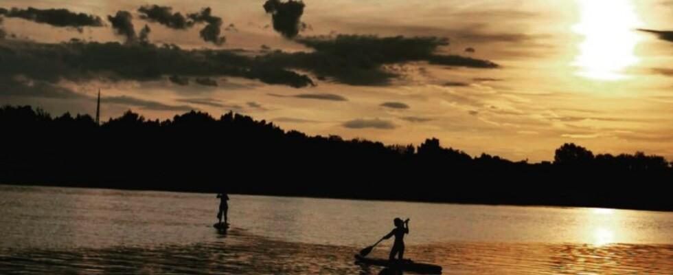 Sunset SUP-Paddeln auf der Donau