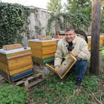Suche Vertriebspartner für unsere Bio Honigprodukte
