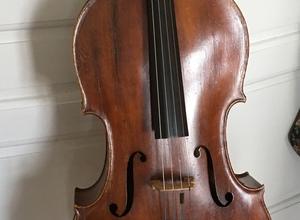 Cello 1/1