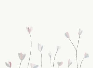 midsummer illustrations